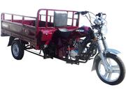 Трицикл Racer Muravei RC200ZH